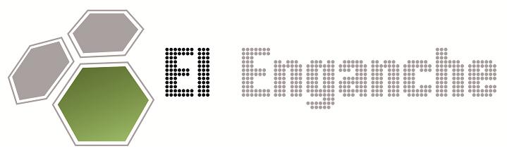 Logo El Enganche