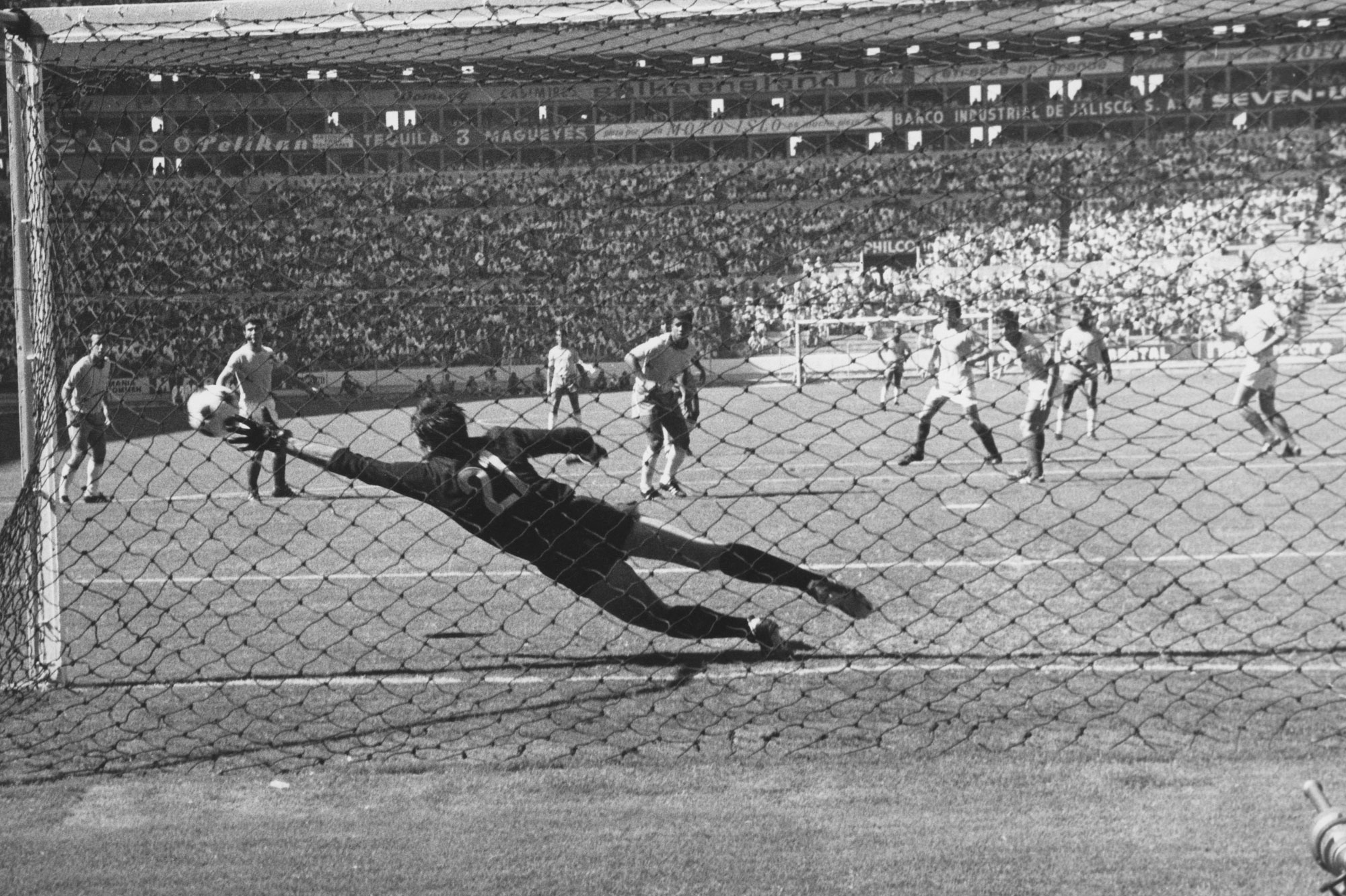 Gol Brasil70