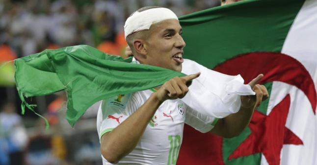 argeliaFeghouli